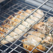 Barbecue with chicken in metal grate — Foto Stock