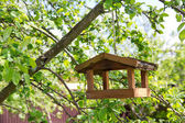 Birdhouse on apple tree — Stock Photo