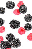 Blackberry and raspberries closeup on white — Stock Photo