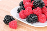 Blackberry and raspberries — Stock Photo