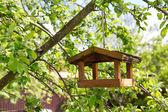 Birdhouse on apple tree — Stock Photo
