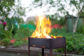 Fire in barbecue — Stock Photo