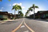 Caribbean road — Stock Photo