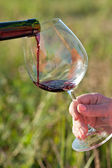 Pouring red wine into glass — Stock Photo