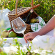 Picnic in sunny summer day — Stock Photo #13703045