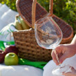 Picnic in sunny summer day — Stock Photo #13703192