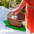 Picnic in sunny summer day — Stock Photo