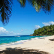 Palms on tropical beach — Stock Photo #13703274