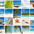 Caribbean collage — Stock Photo #13703373