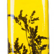 Olive oil in glass bottle with herb rosemary inside - Stock Photo