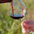 Wine pouring from bottle, outdoor — Stock Photo
