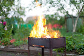 Burning fire in barbecue — Stock Photo