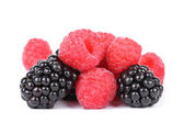 Blackberry and raspberries — 图库照片