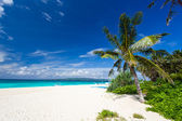 Tropical scene, Philippines — Foto Stock