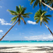 Stock Photo: Tropical scene, Philippines