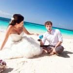 Choice for honeymoon — Stock Photo