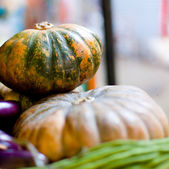 Green pumpkins on market — Stock Photo