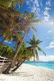 Idyllic tropical scene — Stock Photo
