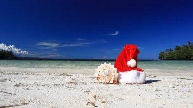 Santa Claus hat and seashell on caribbean beach — Stock Video