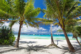 Tropical beach — Stock fotografie