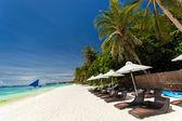 Parasoller och solstolar på tropiska kusten — Stockfoto