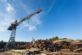 Saw mill with crane — Stock Photo