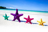 Color starfishes on sandy beach — Stock Photo