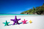 цвет сердцевидных на песчаном пляже — Стоковое фото