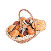 Basket with porcini, orange and brown cap boletuses — Stock Photo