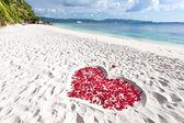 Heart of roses petals on sea sand beach — Stock Photo