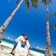 Stok fotoğraf: Exotic tropical wedding