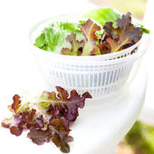 Lettuce salad in spinner — Stock Photo