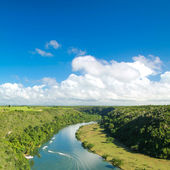 Tropical river Chavon — Stock Photo