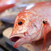 Lapu-lapu, red snapper and tuna, seafood on market — Stock Photo