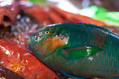 Parrot fish, seafood on market — Stock Photo
