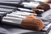Professional make-up brushes in compact case  — Stock Photo