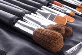 Professionele make-up borstels in compacte behuizing — Stockfoto