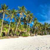 White beach on Boracay island — Stock Photo