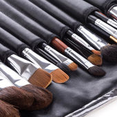 Professional make-up brushes in compact case  — Stock fotografie