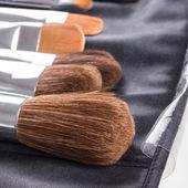 Pincéis de maquiagem profissional — Foto Stock