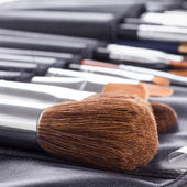Professional makeup brushes in compact case  — ストック写真