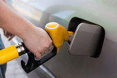 Driver pumping gasoline at the gas station — Stock Photo