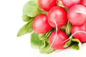 Pile of garden radish — Stock Photo