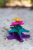 Color starfishes in tropic paradise. Vacation concept — Stock Photo