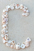 Letters made from seashells on sand — Stock Photo