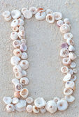 Letters made from seashells on sand — Photo