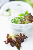 Lettuce salad in spinner — Stock Photo
