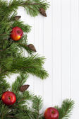 Spruce tree branches frame, evergreen garland — Foto Stock