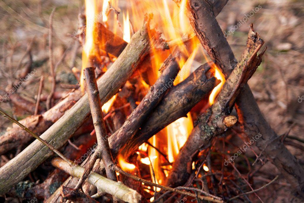 在森林里,露营篝火晚会