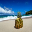Pina colada on caribbean beach — Photo #50008673